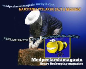 saznajte sve o biologiji pčela na sajtu medpcelarskimagazin/honeybeekeeping magazine